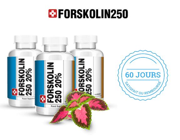 Forskolin 250 : complément alimentaire contenant de la forskoline